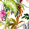 zoom-Jungle-web